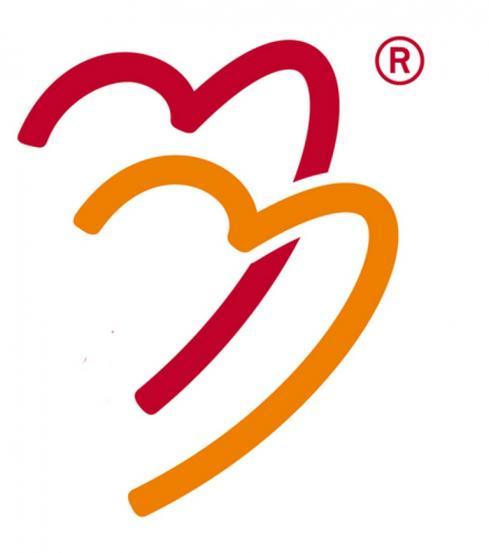 schuldhulpmaatje logo